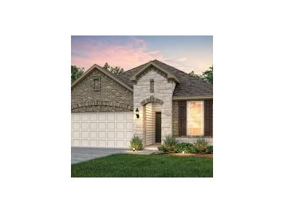 Hutto Single Family Home For Sale: 201 Methodius Dr