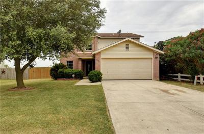 New Braunfels Single Family Home For Sale: 1384 Copper Path Dr