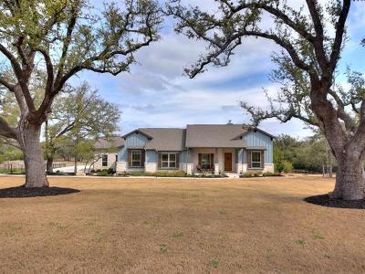 Liberty Hill Single Family Home For Sale: 212 Umbrella Sky
