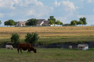 Bosque County, Bell County, Burnet County, Calhoun County, Coryell County, Lampasas County, Limestone County, Llano County, McLennan County, Mills County, Milam County, San Saba County, Williamson County, Hamilton County, Travis County, Comal County, Comanche County, Kendall County Single Family Home For Sale: 1990 County Road 127
