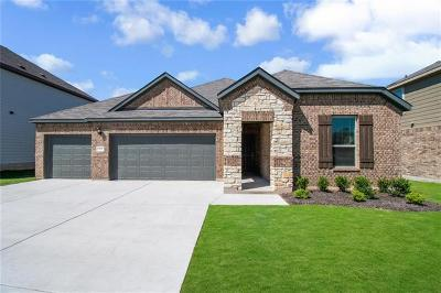 Liberty Hill Single Family Home For Sale: 163 Limonite Lane