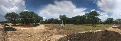 Liberty Hill Residential Lots & Land For Sale: 3216 Whitt Park Path