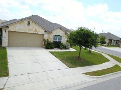 San Marcos Single Family Home Pending - Taking Backups: 102 Casita Cv