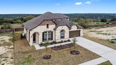 Cedar Park Single Family Home For Sale: 3510 Scenic Valley Dr