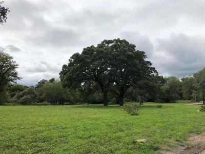 Austin Residential Lots & Land For Sale: 1103 Matthews Ln