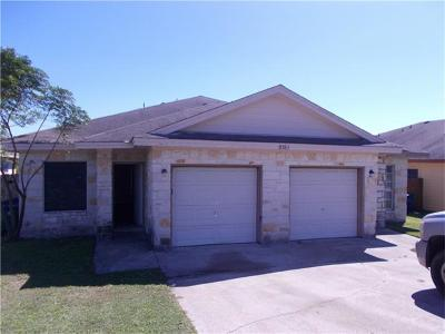 Austin Multi Family Home For Sale: 9935 W Bilbrook Pl