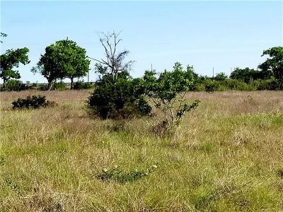Bertram TX Residential Lots & Land For Sale: $44,900
