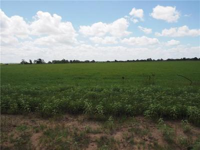 Bastrop Farm For Sale: 773 Hwy 304 Rd