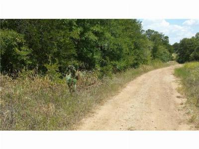 Bastrop Residential Lots & Land For Sale: 288 Kahana Ln