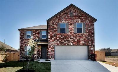 Lockhart TX Single Family Home For Sale: $261,100