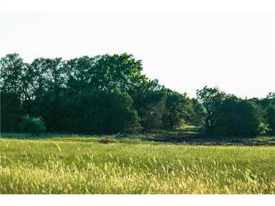 Burnet TX Farm For Sale: $120,000