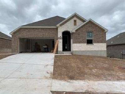 Leander Single Family Home For Sale: 709 Millcreek Ln