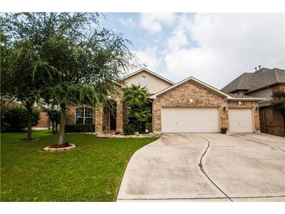 Pflugerville Single Family Home For Sale: 2132 Village View Loop