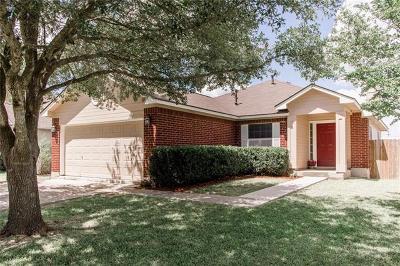 Kyle Single Family Home For Sale: 180 Elmer Cv