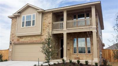 Single Family Home For Sale: 16901 John Michael Dr