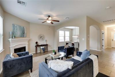 Hays County, Travis County, Williamson County Single Family Home For Sale: 313 Jack Ryan Ln