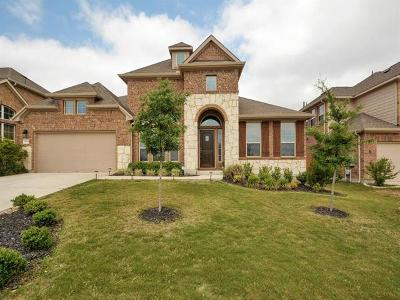 Travis County Single Family Home For Sale: 8804 Vantage Point Dr