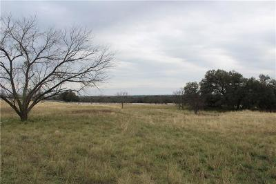 Bell County, Burnet County, Coryell County, Lampasas County, Mills County, Williamson County, San Saba County, Llano County Farm For Sale: 9 The Hills Rd