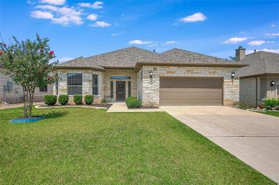 Georgetown Single Family Home For Sale: 5613 Big Bend Trl