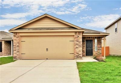 Kyle Single Family Home For Sale: 1525 Breanna Lane