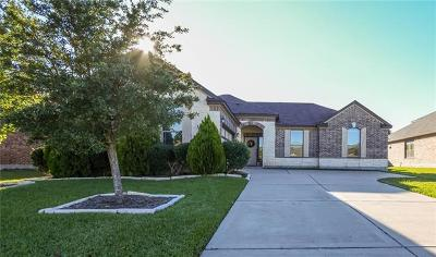 Pflugerville Single Family Home For Sale: 19216 Pencil Cactus Dr