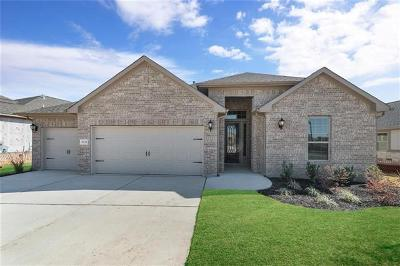 Round Rock Single Family Home For Sale: 5133 Correlli Fls