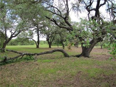 Wimberley Farm For Sale: Packer Rd
