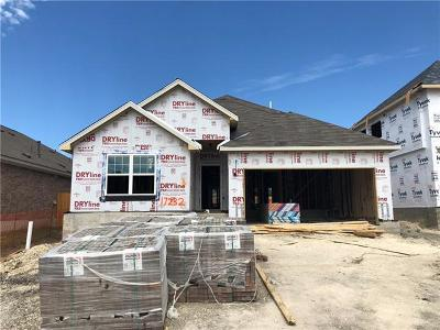 Pflugerville Single Family Home For Sale: 17232 Borromeo Ave
