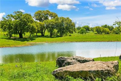 Burnet County, Lampasas County, Bell County, Williamson County, llano, Blanco County, Mills County, Hamilton County, San Saba County, Coryell County Farm For Sale: 906 Hagelstein Rd