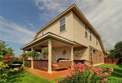 Georgetown Single Family Home For Sale: 117 Inks Lake Dr