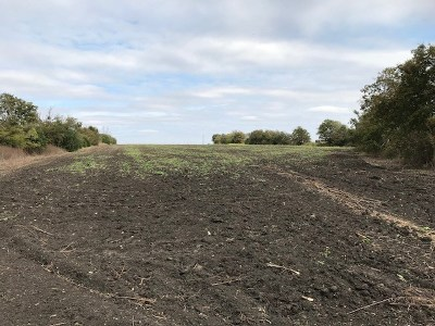 Taylor Residential Lots & Land For Sale: Fm 973