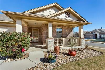 Pflugerville Single Family Home For Sale: 4728 Randig Ln