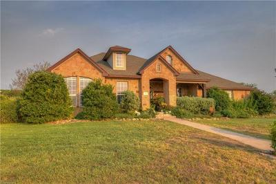 Burnet Single Family Home For Sale: 111 Natalies Pt