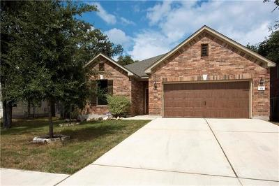 San Marcos Single Family Home For Sale: 314 Autumn Willow Dr