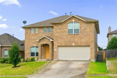 Round Rock Single Family Home For Sale: 3632 Sandy Brook Dr