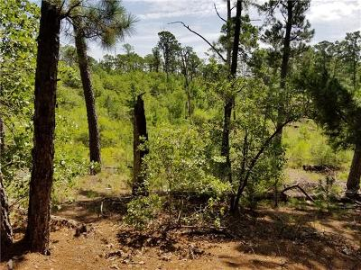 Bastrop Residential Lots & Land For Sale: TBD S Burr, Lot 133 Ct
