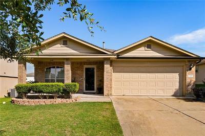 Kyle Single Family Home For Sale: 446 Paddington Dr