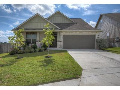 New Braunfels Single Family Home For Sale: 845 Water Ln