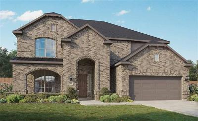 Pflugerville Single Family Home For Sale: 20620 Mouflon Dr