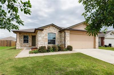 Hays County, Travis County, Williamson County Single Family Home For Sale: 232 Ames Cv