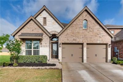 Hays County Single Family Home For Sale: 324 Lacey Oak Loop