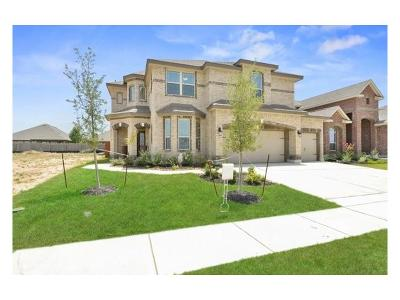 Hays County Single Family Home For Sale: 3613 Cinkapin Dr