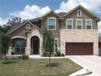 Dripping Springs Single Family Home For Sale: 307 Quartz Dr