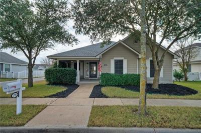 Kyle Single Family Home For Sale: 298 Hogan