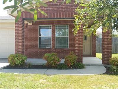 Kyle Single Family Home For Sale: 382 Lake Washington Dr