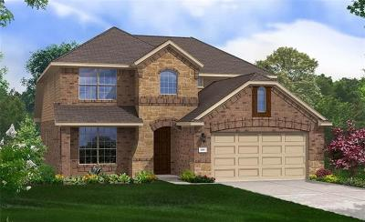 Round Rock Single Family Home For Sale: 6831 Catania Loop