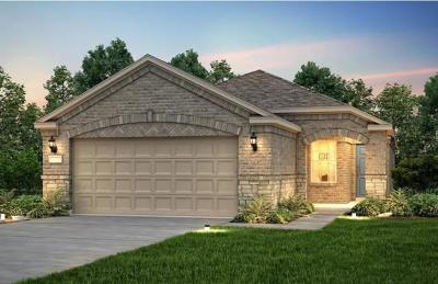 Georgetown Single Family Home For Sale: 210 Brenham Pass