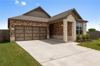 Del Valle Single Family Home For Sale: 12733 Stoney Ridge Bnd