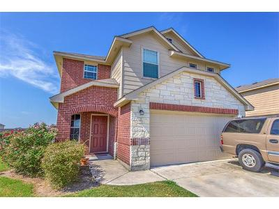 Hutto Single Family Home For Sale: 128 Luna Vista Dr