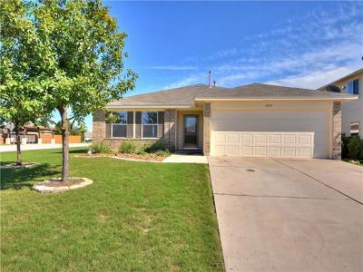Hutto Single Family Home For Sale: 202 Tolcarne Dr